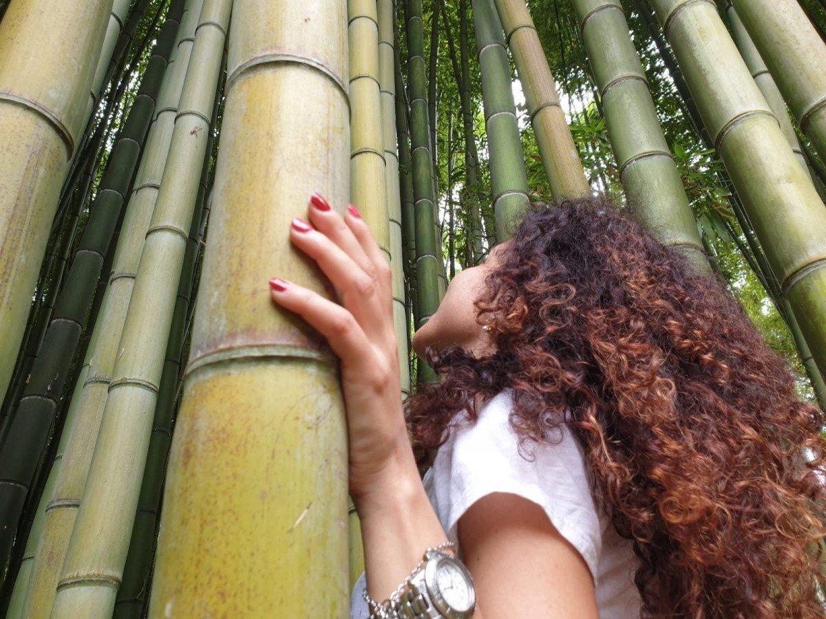 Blogger e bambù al giardino di Ninfa