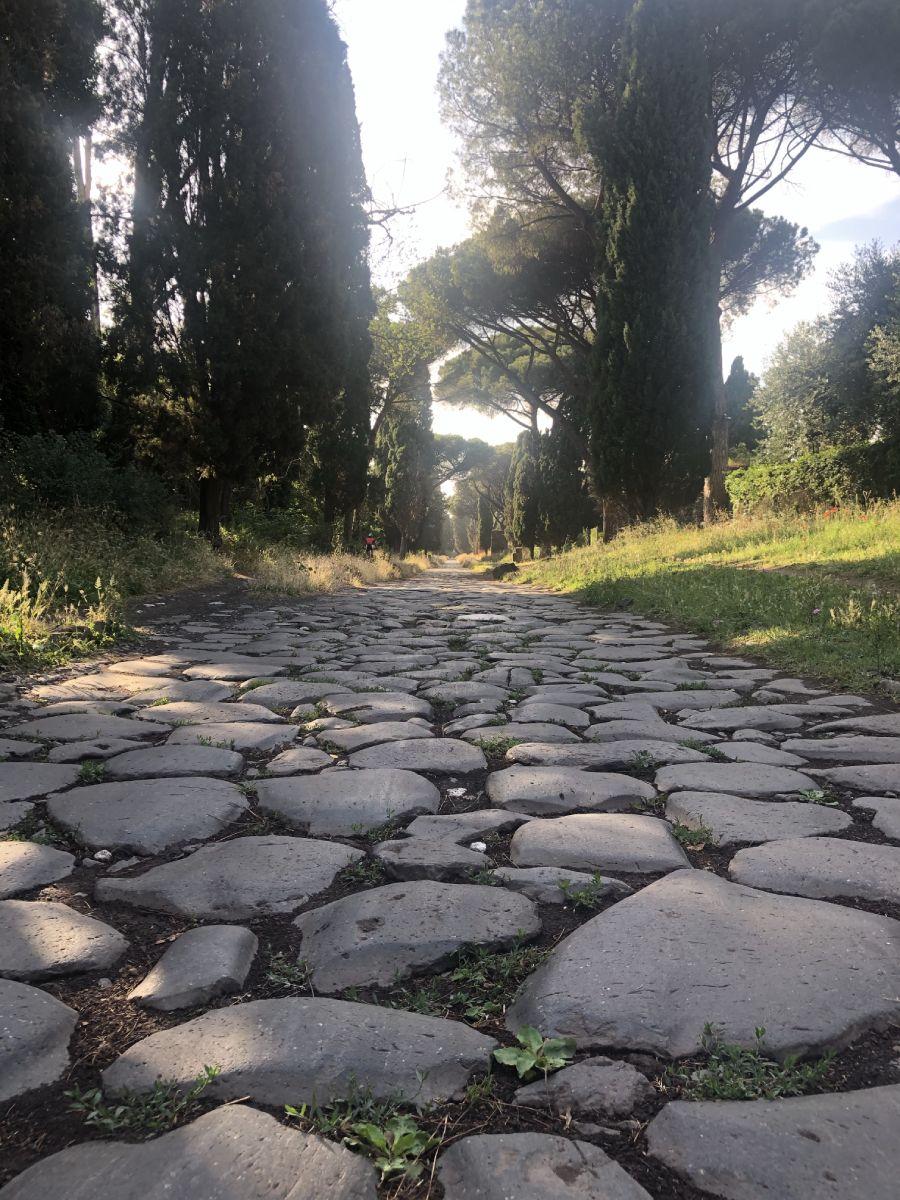 Scorcio parco Appia Antica